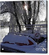 Safe Winter Acrylic Print