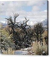 Sagebrush And Snow Acrylic Print