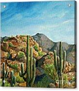 Saguaro Canyon Acrylic Print