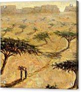 Sahelian Landscape Acrylic Print by Tilly Willis
