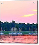 Sail Boats Pretty In Pink  Acrylic Print