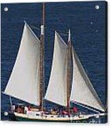 Sailboat In The San Francisco Bay . 7d7900 Acrylic Print