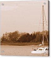 Sailboat On Chesapeake Acrylic Print
