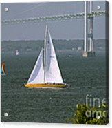 Sailing Newport Acrylic Print