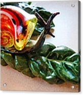 Salad Dressing Acrylic Print