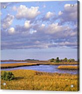 Saltwater Marshes At Cedar Key Florida Acrylic Print by Tim Fitzharris