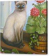 Samantha The Siamese Cat Acrylic Print