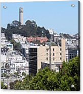 San Francisco Coit Tower Acrylic Print