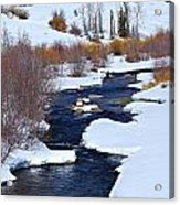 San Juan River At At Last Ranch Acrylic Print