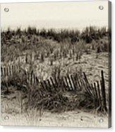 Sand Dune In Sepia Acrylic Print