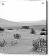 Sand Dunes At Death Valley California Usa Acrylic Print