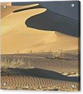 Sand Dunes In Namib Desert Acrylic Print