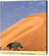 Sand Dunes, Sossusvlei Acrylic Print