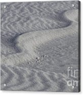 Sand Patterns 2 Acrylic Print