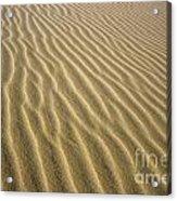 Sandhills Acrylic Print
