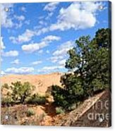 Sandstone Sky Acrylic Print by Gary Whitton