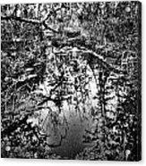Sandy Creek Acrylic Print