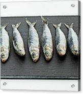 Sardines On Chopping Board Acrylic Print