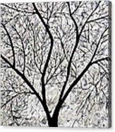 Sarvaras Acrylic Print