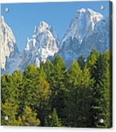 Sasso Lungo Group In The Dolomites Of Italy Acrylic Print