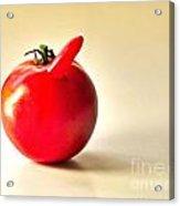 Saucy Tomato Acrylic Print