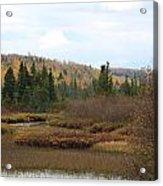Sawtooth Swamp Acrylic Print