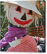 Scarecrow Andy Acrylic Print