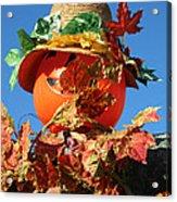 Scarecrow Boa Acrylic Print