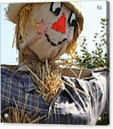 Scarecrow Farmer Acrylic Print