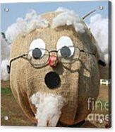 Scarecrow Gramps Acrylic Print