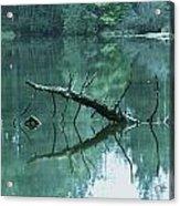 Scenic Woodland Lake Acrylic Print