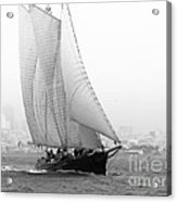 Schooner By The Bay Acrylic Print by Patty Descalzi