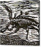 Scorpion Acrylic Print by Marita McVeigh
