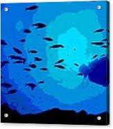 Scuba Dive Acrylic Print