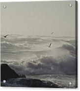 Sea Birds Fly Above Large Waves Acrylic Print