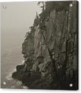 Sea Cliff At Quoddy Head  Acrylic Print