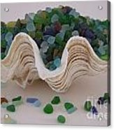 Sea Glass In Clam Shell - No 1 Acrylic Print