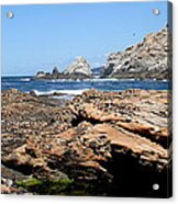 'sea Level' Acrylic Print by PJQandFriends Photography
