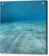 Seabed Acrylic Print