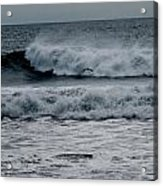 Seagull And Surf Acrylic Print
