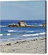 Seal Bay Beach Acrylic Print