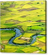 Season Grain Acrylic Print