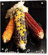 Season's Greetings- Thanksgiving Card No. 1 Acrylic Print by Luke Moore