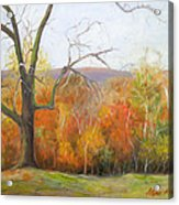 Seasons Pass Acrylic Print