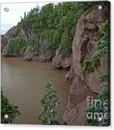 Seastacks At Hopewell Rocks Acrylic Print
