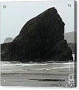 Sebastian Beach California Acrylic Print