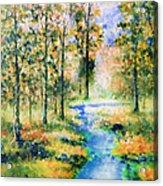 Secret Rivers Acrylic Print