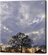 Sedgeley Tree Acrylic Print