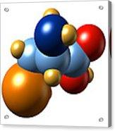 Selenocysteine, Molecular Model Acrylic Print