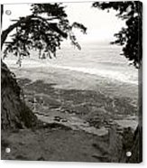 Sentinels View Of The Ocean Black And White Acrylic Print
